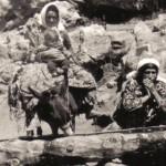 Degirmenlik Koyu(85)
